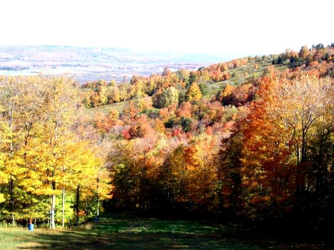 Canaan Valley